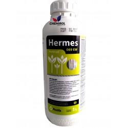 HERMES 069 EW 1L
