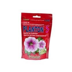 """PLANTON """"S"""" SURFINIA"""