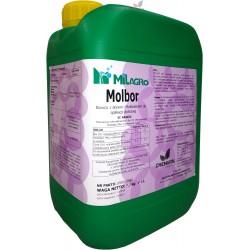 MOLBOR MOLIBDEN - 1.7% BOR - 4.4% 6L (B Mo)